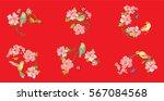 set hand drawn vector set birds ...   Shutterstock .eps vector #567084568