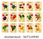 price tags for fruit and berry. ...   Shutterstock .eps vector #567114940