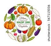 organic banner of vegetables.... | Shutterstock .eps vector #567115036