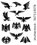 heraldic eagle  hawk and falcon.... | Shutterstock .eps vector #567115078