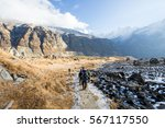 nepal   31 december 2016   ... | Shutterstock . vector #567117550
