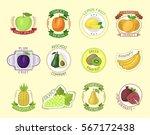 vector fruits badges. | Shutterstock .eps vector #567172438