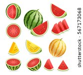 watermelon. vector illustration. | Shutterstock .eps vector #567173068