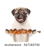 Stock photo puppy with grilled meat on skewer isolated on white background 567183730