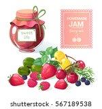 vector set on jam  berries ... | Shutterstock .eps vector #567189538