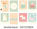 collection of birthday banner ... | Shutterstock .eps vector #567215824
