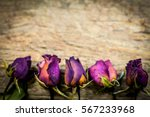 Blurry Dry Roses On Wood...