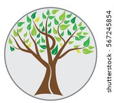 tree vector. for tree logo... | Shutterstock .eps vector #567245854