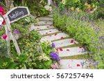 Romantic Path To Wedding...