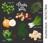 spices and herbs set to prepare ... | Shutterstock . vector #567317866