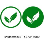 natural icons with green leaves ... | Shutterstock .eps vector #567344080