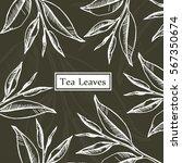 tea leaves  organic  green ... | Shutterstock .eps vector #567350674