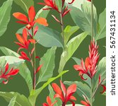 tropical leaves and flowers... | Shutterstock .eps vector #567431134