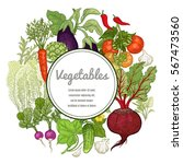 vegetables hand drawing with... | Shutterstock .eps vector #567473560