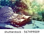 summer hat   book and spring... | Shutterstock . vector #567499009