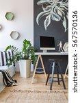 stylish designed office... | Shutterstock . vector #567570136