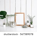 stylish feminine space with... | Shutterstock . vector #567589078