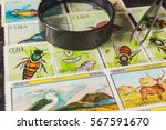 stamp collecting. philatelic.... | Shutterstock . vector #567591670