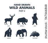 hand drawn textured wild... | Shutterstock .eps vector #567666868