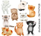 cats. kitten character raster... | Shutterstock . vector #567747418