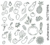 black and white graphic fruits... | Shutterstock .eps vector #567778996