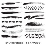 a collection of natural brush... | Shutterstock .eps vector #56779099