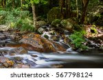 cascade in the rainforest ... | Shutterstock . vector #567798124