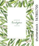 watercolor hand painted green... | Shutterstock . vector #567801700