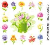Garden Wild Flower Icon Set....