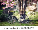 vintage bicycle in the spring... | Shutterstock . vector #567828790