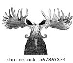 funny old hipster moose with... | Shutterstock . vector #567869374