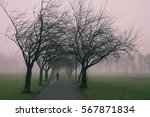 An Early Foggy Morning In A...