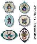 vector jewel insect gemstone... | Shutterstock .eps vector #567889834