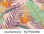 seamless background  with... | Shutterstock .eps vector #567926488