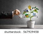 hand of businesswoman watering...   Shutterstock . vector #567929458