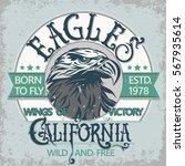 eagle head logo for t shirt ... | Shutterstock .eps vector #567935614