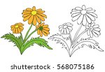 coloring book cartoon flowers | Shutterstock .eps vector #568075186