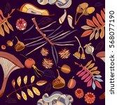 hand drawn autumn seamless... | Shutterstock .eps vector #568077190