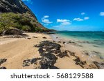 tropical paradise beach with... | Shutterstock . vector #568129588