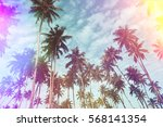 coconut palm trees on tropical... | Shutterstock . vector #568141354