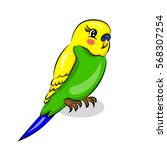 bright colorful cute parrot at... | Shutterstock .eps vector #568307254