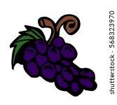 grape on a white background... | Shutterstock .eps vector #568323970