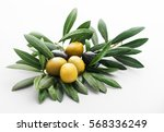 green and black olives still... | Shutterstock . vector #568336249