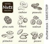 nuts set. hand drawn vintage... | Shutterstock .eps vector #568357039