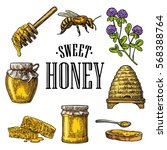 honey set. jar  bee  hive ... | Shutterstock .eps vector #568388764