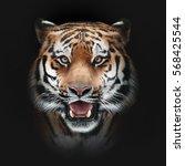 tiger face on black background   Shutterstock . vector #568425544