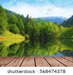 lake in the forest | Shutterstock . vector #568474378