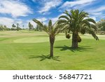 golf course with palm trees   Shutterstock . vector #56847721