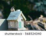 Sparrow On Birdhouse