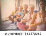 front view of seniors relaxing... | Shutterstock . vector #568570063